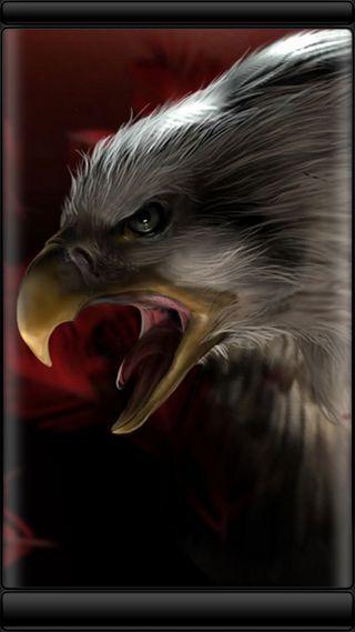 Обои на телефон стиль, символ, птицы, орел, красота, грани, s7, edge style, bald eagle