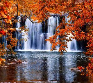 Обои на телефон водопад, приятные, прекрасные, осень, милые, взгляд, autumn waterfall
