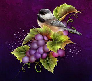 Обои на телефон фрукты, птицы, дизайн, виноград, vino moonbeam1212