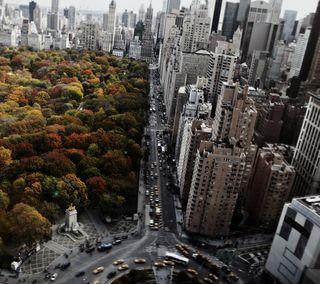 Обои на телефон нью йорк, путь, парк, новый, небоскребы, круги, дорога, город, columbus circle