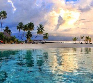 Обои на телефон тропические, пляж, tropical   beach
