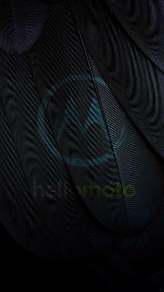Обои на телефон привет, черные, перья, перо, моторола, логотипы, motorola, hello, hd