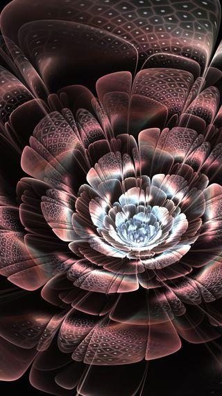 Обои на телефон лепестки, цветы, свет, дым, scales, lightl, ine, flower petals light
