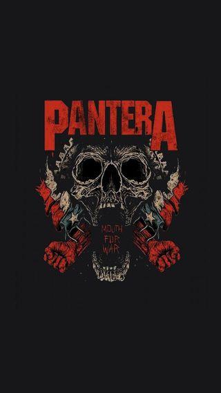 Обои на телефон группа, череп, тяжелый, рот, металл, война, pantera, banda