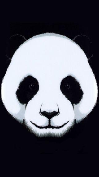 Обои на телефон панда, животные, andreymax