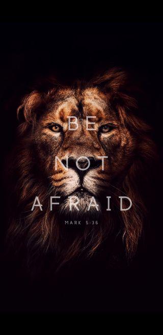 Обои на телефон храбрость, библия, лев, король, исус, будь, fearless, christianity, be not afraid
