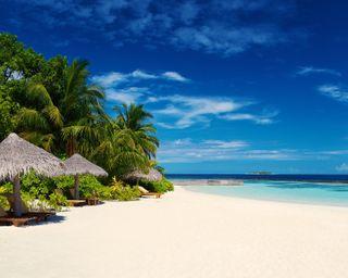 Обои на телефон песок, тропические, пляж, пальмы, остров, небо, море, мальдивы, берег, tropical maldives