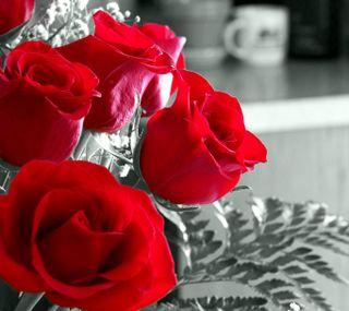 Обои на телефон валентинки, черные, цветы, розы, природа, красые, белые