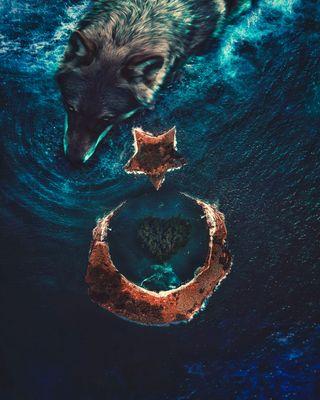 Обои на телефон ататюрк, турецкие, остров, океан, море, луна, звезда, волк