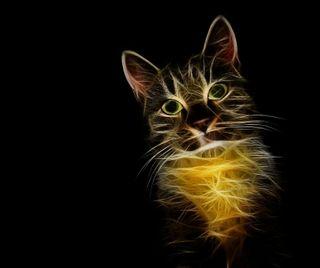 Обои на телефон питомцы, кошки, животные, абстрактные