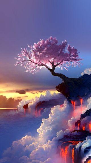 Обои на телефон дерево, красые, red wash