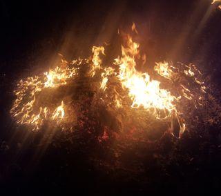 Обои на телефон свет, природа, огонь, firey light, dcaesar71