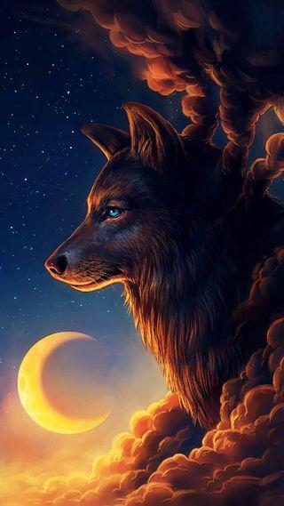 Обои на телефон лиса, красота, классные, smok, fox beauty, creation