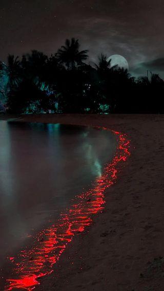 Обои на телефон рай, море, красые, red sea, paradise red sea