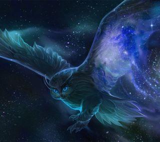 Обои на телефон сова, птицы, синие, ночь