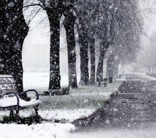 Обои на телефон снежные, скамейка, парк, зима, дорога, деревья, winter park