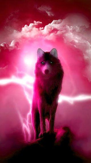 Обои на телефон гром, цветные, фантазия, розовые, облака, животные, волк