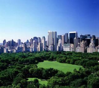 Обои на телефон нью йорк, парк, новый, манхэттен, лето, йорк, new york summer, central park