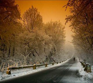 Обои на телефон холод, хайвей, улица, снег, светящиеся, небо, зима, закат, дорога, деревья, winter  road
