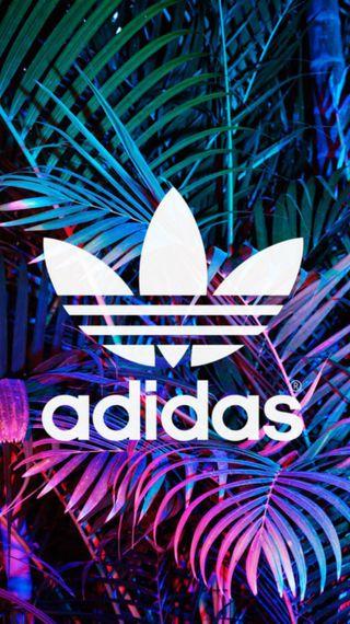 Обои на телефон природа, логотипы, бренды, адидас, adidas