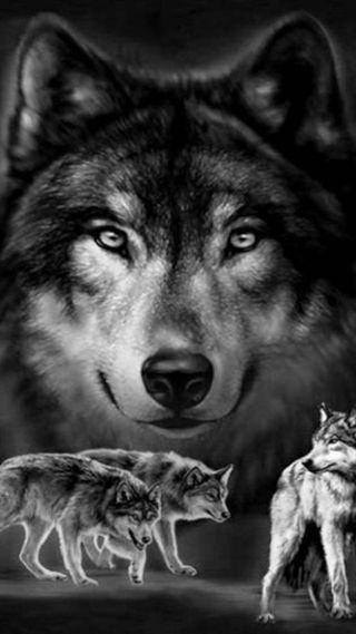 Обои на телефон семья, волк