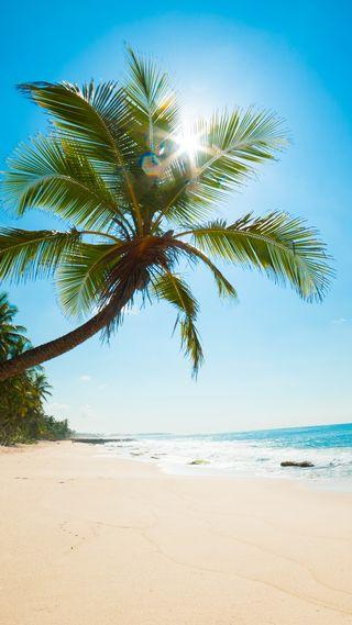 Обои на телефон солнечный свет, тропические, природа, пляж, пальмы, beack