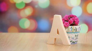 Обои на телефон простые, ваза, буквы, simple vase, a vase
