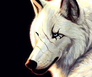 Обои на телефон животные, волк, белые, арт, art