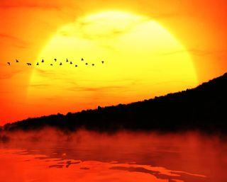 Обои на телефон силуэт, туман, тень, солнце, птицы, прекрасные, оранжевые, озеро, облака, закат, горы