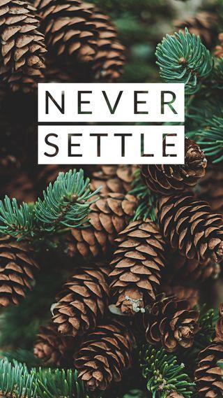 Обои на телефон решить, стиль, природа, никогда, tumblr, never settle
