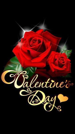 Обои на телефон цветы, розы, красые, день