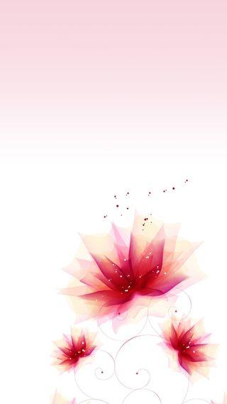 Обои на телефон лотус, цветы, clearskin lotus