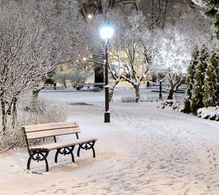 Обои на телефон парк, снег, скамейка, ночь, зима, белые