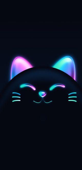 Обои на телефон череп, цветные, хэллоуин, тема, привет, кот, ведьма, over, hello, gato color