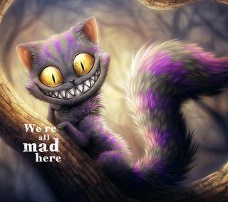 Обои на телефон purple cat, фиолетовые, кошки, безумные, алиса, страна чудес
