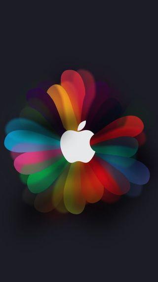 Обои на телефон эпл, цветные, apple