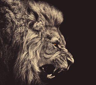 Обои на телефон лев, злые, дизайн, hd