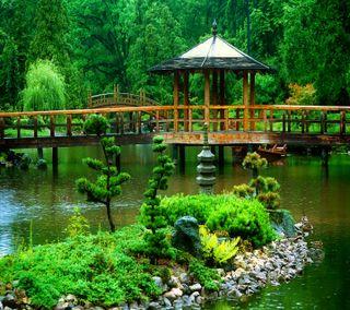 Обои на телефон сад, зеленые, green  garden