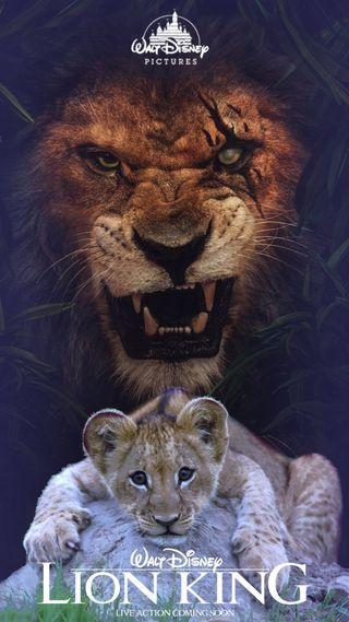 Обои на телефон фильм, фильмы, лев, король, roi