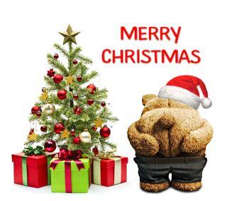 Обои на телефон тед, счастливое, санта, рождество, плохой, медведь, забавные, дерево, bad
