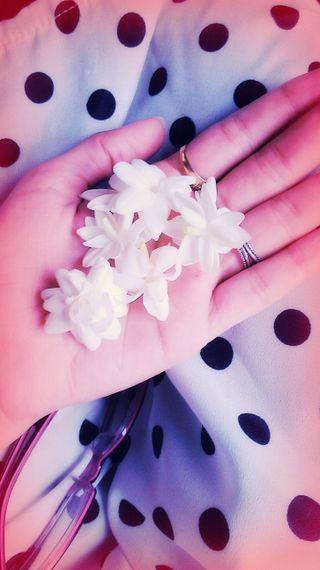 Обои на телефон руки, цветы, удивительные, прекрасные, красота