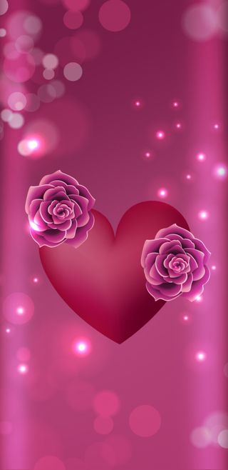 Обои на телефон девчачие, цветы, симпатичные, свет, розы, розовые, прекрасные, подарок, любовь, loveisagift, love