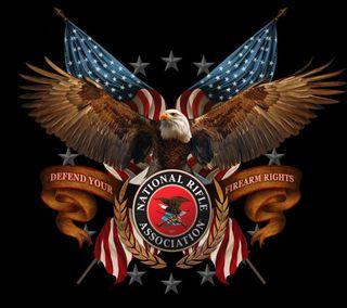 Обои на телефон цитата, сша, пистолет, оружие, орел, винтовка, безопасность, usa, nra, defend