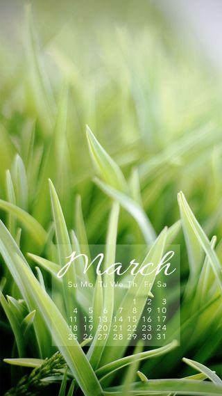 Обои на телефон продуктивность, март, календарь, календари, весна, spring march