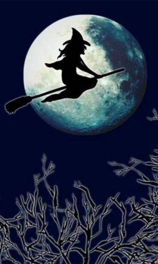 Обои на телефон ведьма, хэллоуин, празднование, праздник, луна