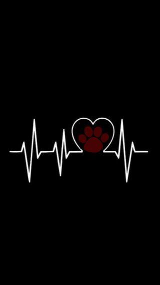 Обои на телефон собаки, черные, стук сердца, сердце, лапа, волк, бит