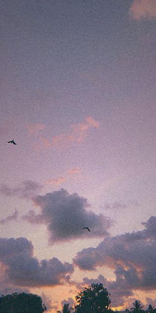 Обои на телефон облачно, фиолетовые, солнечный свет, серые, облака, небо, зерно, закат, purple sky, purple cloudy sky, grain sky, aesthetics