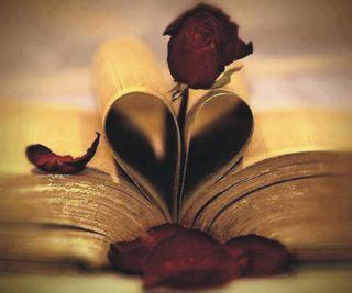 Обои на телефон книга, сердце