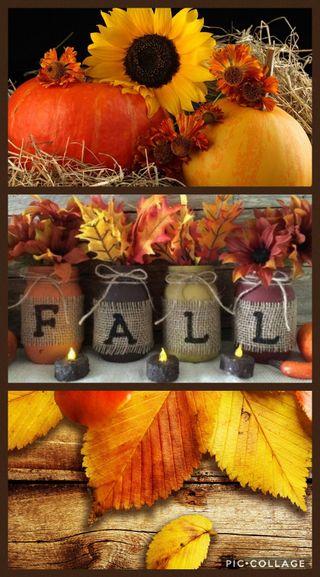 Обои на телефон сцены, благодарение, осень, fall3