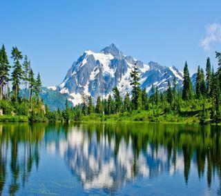 Обои на телефон взгляд, приятные, деревья, горы, mountain trees
